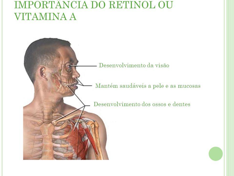 IMPORTÂNCIA DO RETINOL OU VITAMINA A Desenvolvimento da visão Mantém saudáveis a pele e as mucosas Desenvolvimento dos ossos e dentes