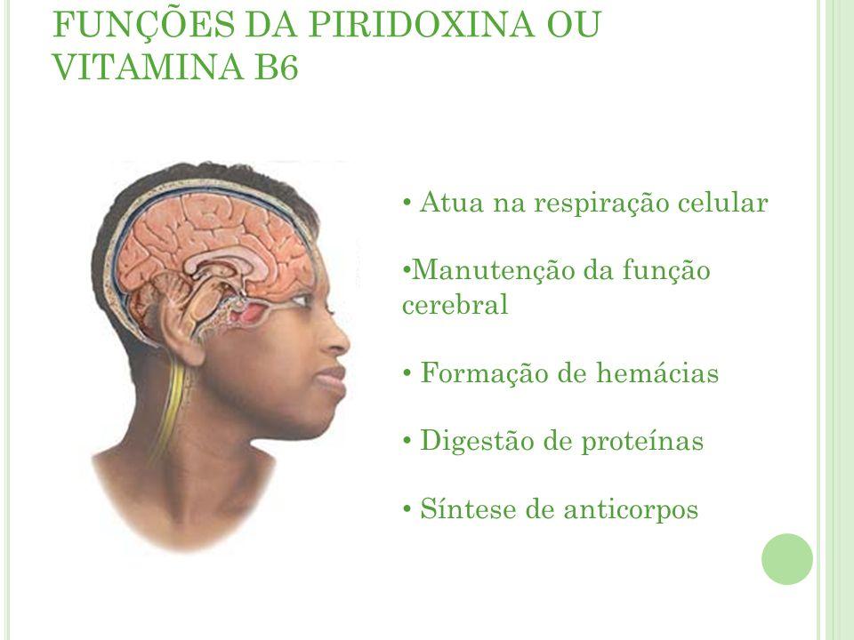 FUNÇÕES DA PIRIDOXINA OU VITAMINA B6 Atua na respiração celular Manutenção da função cerebral Formação de hemácias Digestão de proteínas Síntese de anticorpos