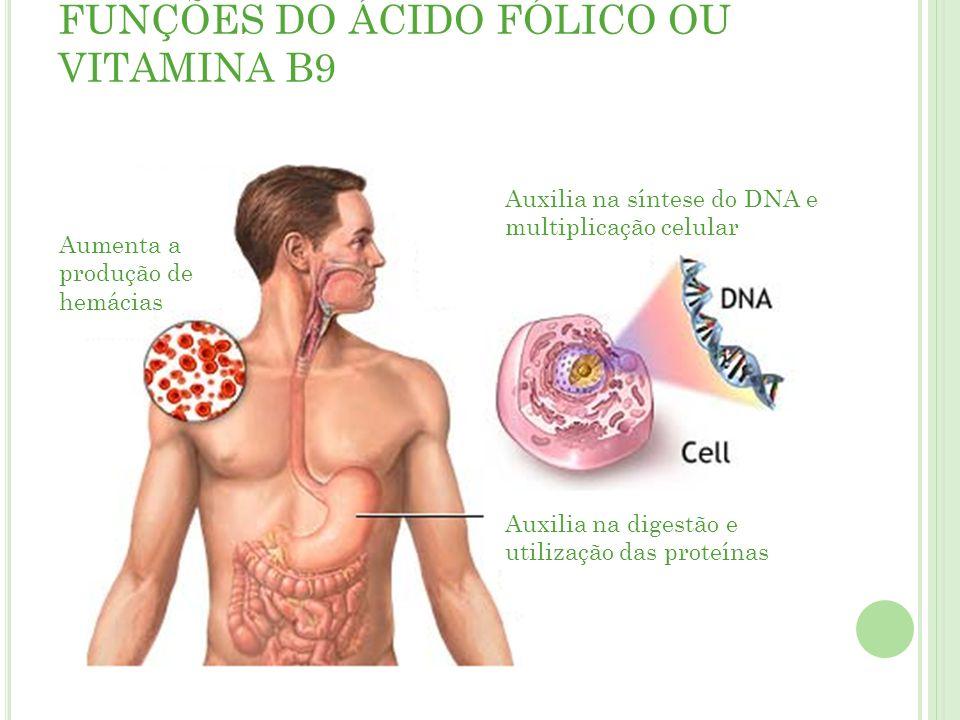FUNÇÕES DO ÁCIDO FÓLICO OU VITAMINA B9 Aumenta a produção de hemácias Auxilia na síntese do DNA e multiplicação celular Auxilia na digestão e utilização das proteínas
