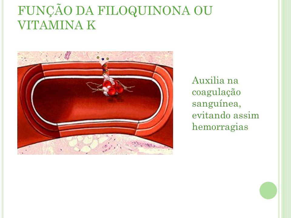 FUNÇÃO DA FILOQUINONA OU VITAMINA K Auxilia na coagulação sanguínea, evitando assim hemorragias