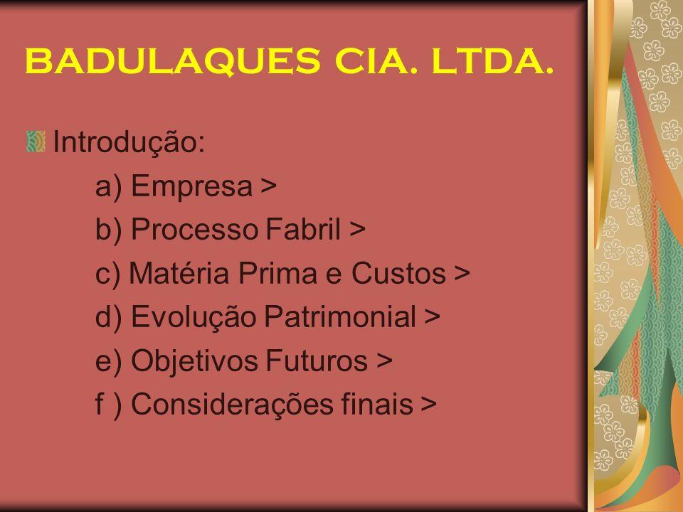 BADULAQUES CIA. LTDA. Introdução: a) Empresa > b) Processo Fabril > c) Matéria Prima e Custos > d) Evolução Patrimonial > e) Objetivos Futuros > f ) C