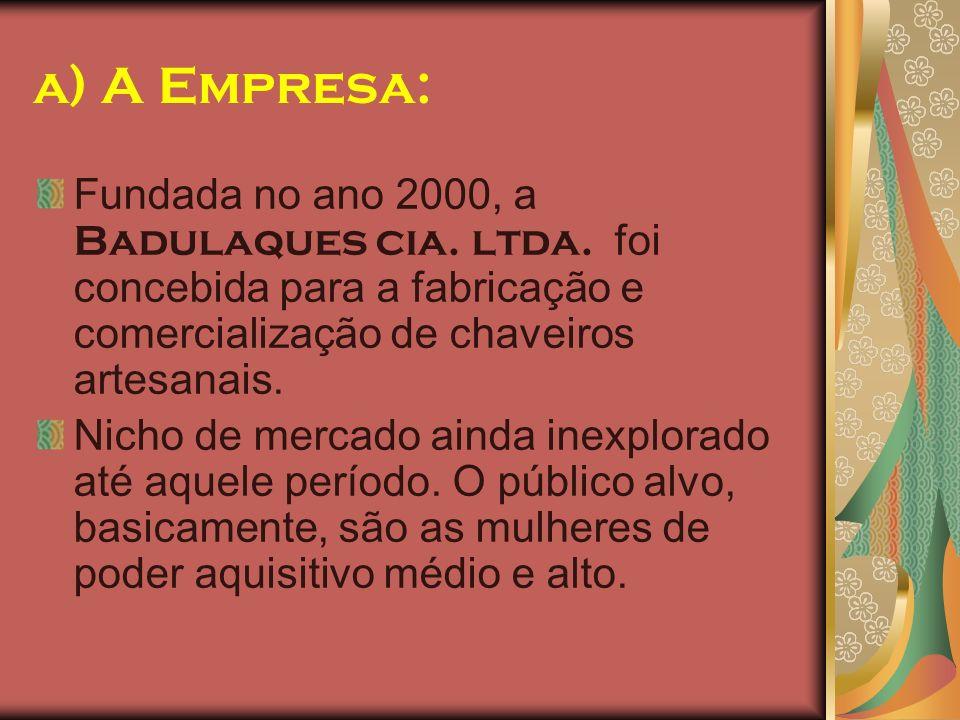 a) A Empresa: Fundada no ano 2000, a Badulaques cia. ltda. foi concebida para a fabricação e comercialização de chaveiros artesanais. Nicho de mercado