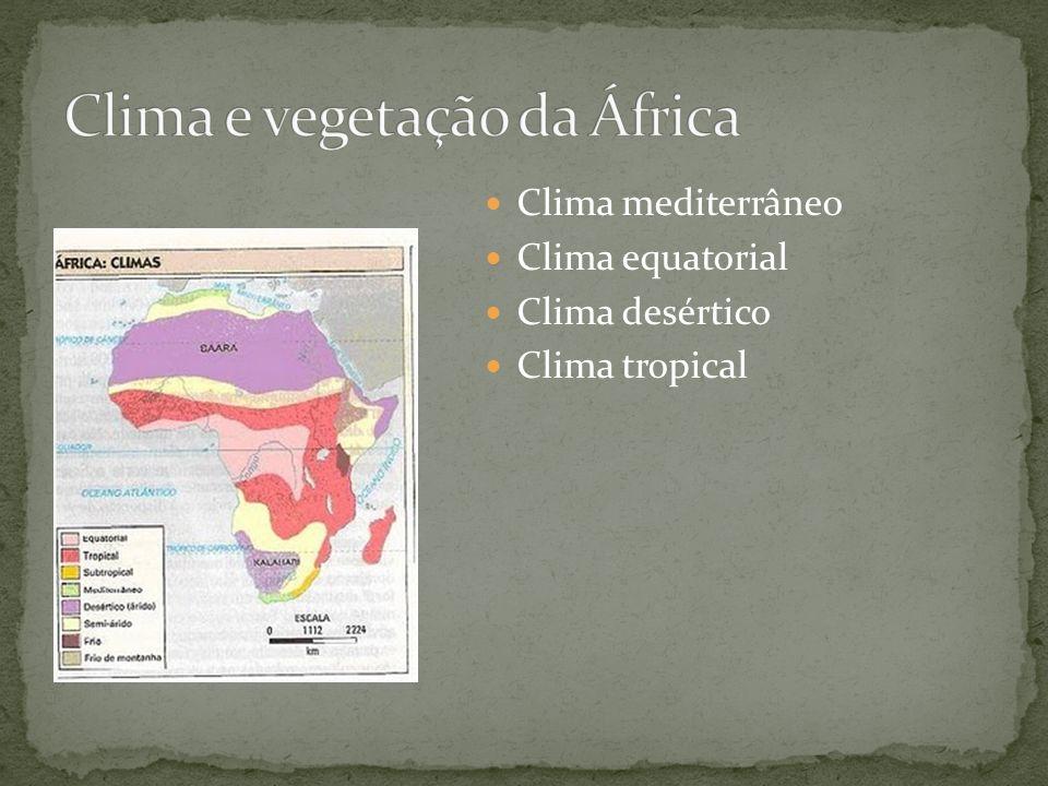 Clima mediterrâneo Clima equatorial Clima desértico Clima tropical