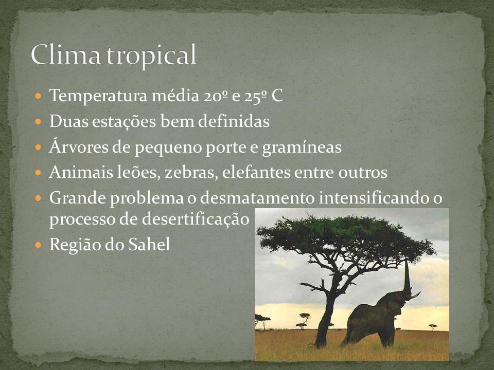 Temperatura média 20º e 25º C Duas estações bem definidas Árvores de pequeno porte e gramíneas Animais leões, zebras, elefantes entre outros Grande pr