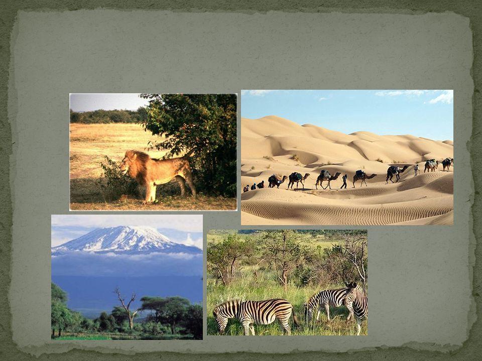 Possui grande diversidade física Grandes vales férteis: Rio Nilo e Rio Limpopo Grandes desertos: Saara e Kalahari