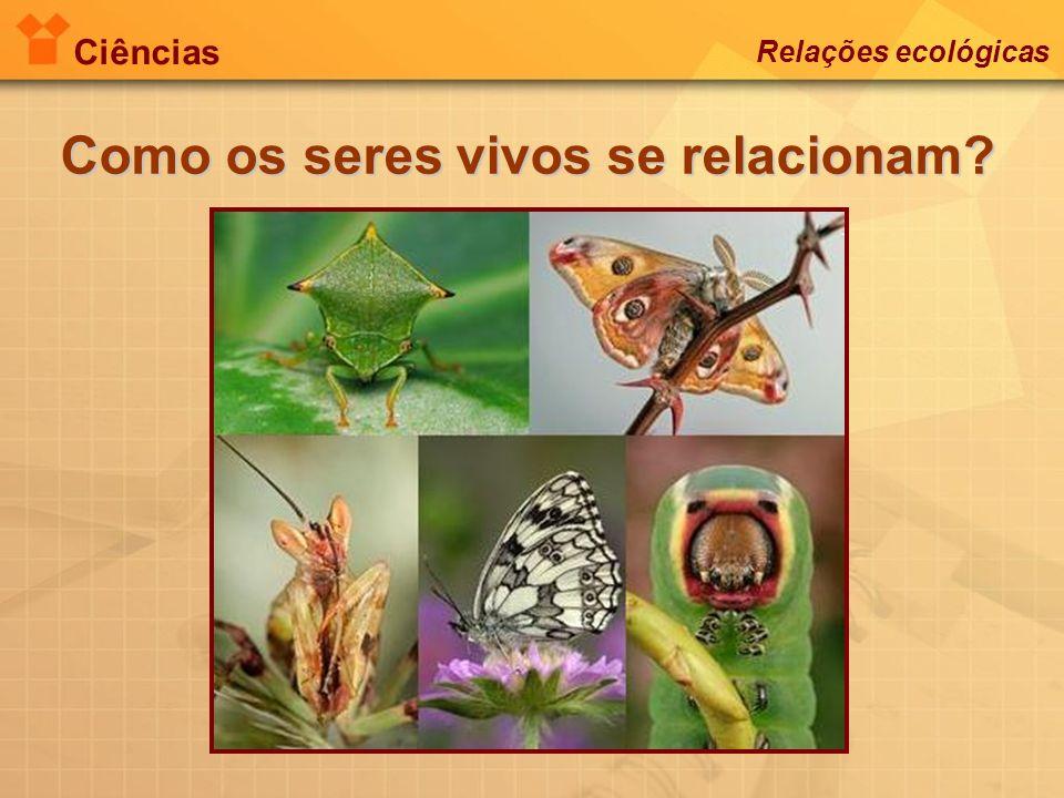 Ciências Relações ecológicas Como os seres vivos se relacionam?