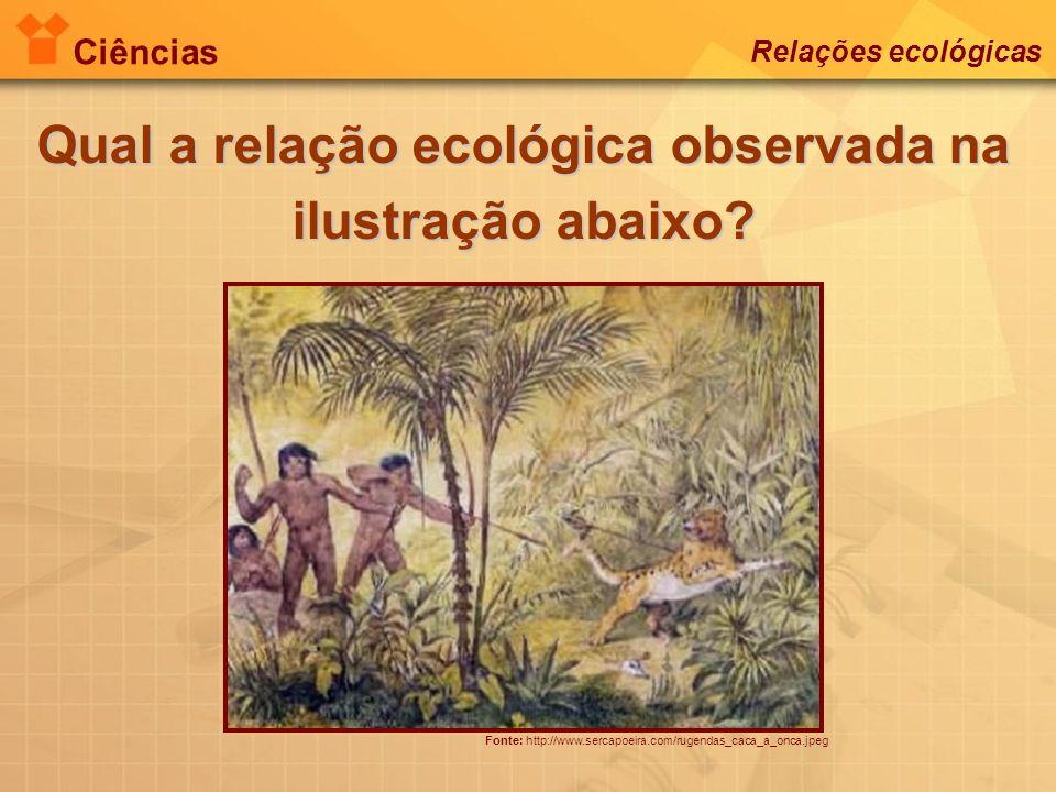 Ciências Relações ecológicas Fonte: http://www.sercapoeira.com/rugendas_caca_a_onca.jpeg Qual a relação ecológica observada na ilustração abaixo?