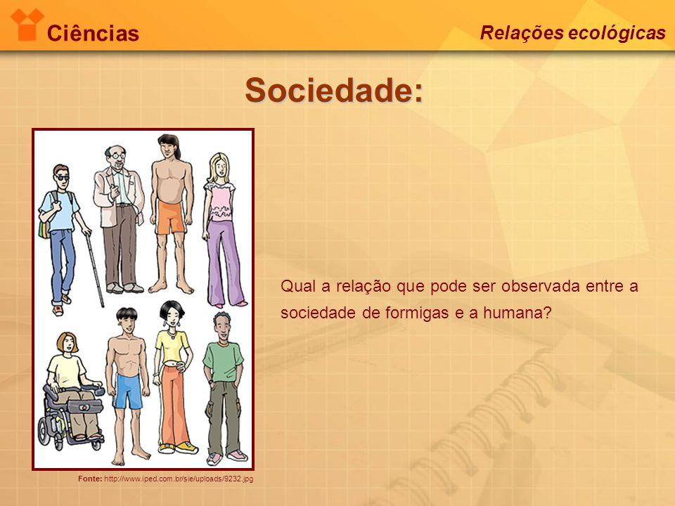 Ciências Relações ecológicas Sociedade: Fonte: http://www.iped.com.br/sie/uploads/9232.jpg Qual a relação que pode ser observada entre a sociedade de