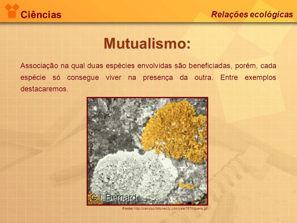 Ciências Relações ecológicas Mutualismo: Fonte: http://campus.fortunecity.com/yale/757/liquens.gif Associação na qual duas espécies envolvidas são ben