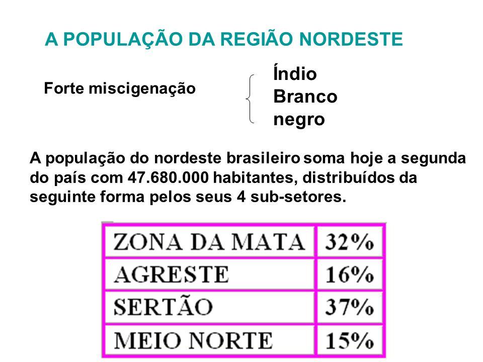 A POPULAÇÃO DA REGIÃO NORDESTE Forte miscigenação Índio Branco negro A população do nordeste brasileiro soma hoje a segunda do país com 47.680.000 hab