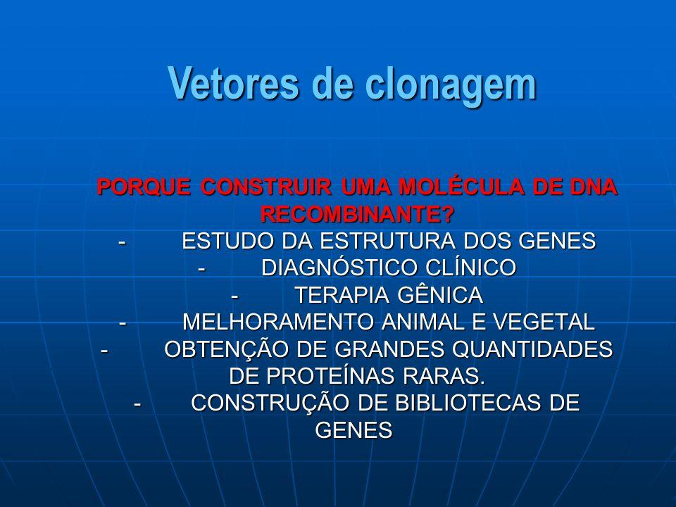 PORQUE CONSTRUIR UMA MOLÉCULA DE DNA RECOMBINANTE.