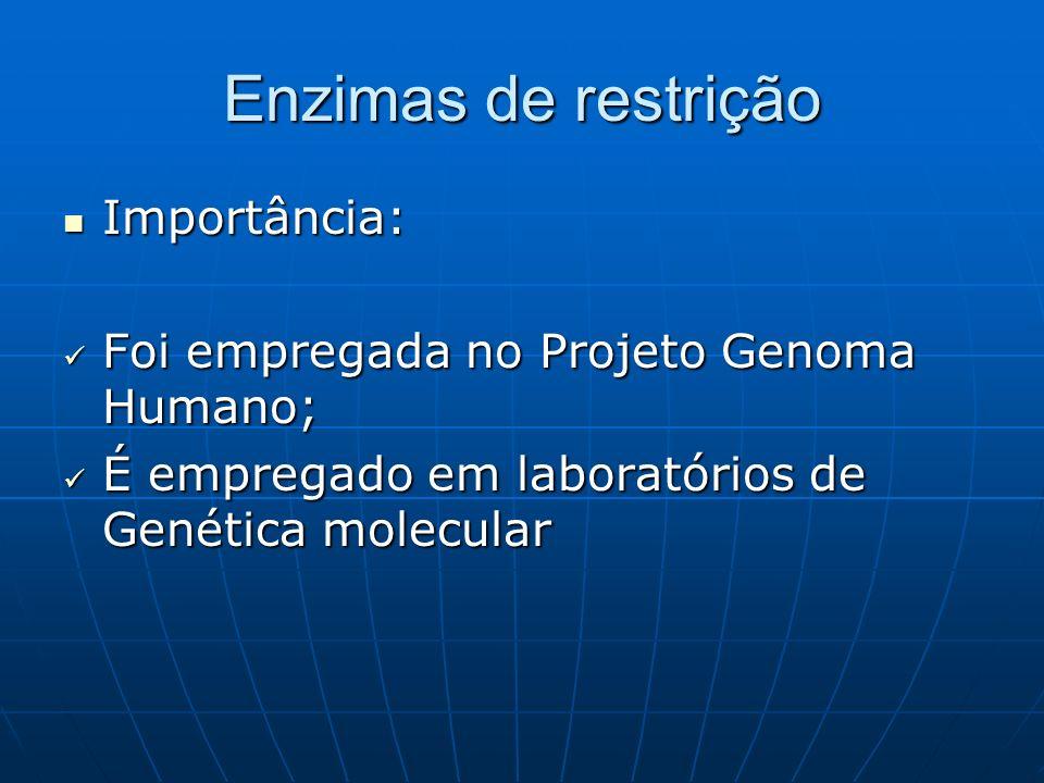 Enzimas de restrição Importância: Importância: Foi empregada no Projeto Genoma Humano; Foi empregada no Projeto Genoma Humano; É empregado em laboratórios de Genética molecular É empregado em laboratórios de Genética molecular