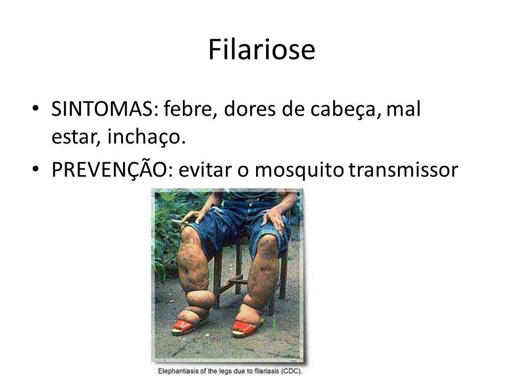 Filariose SINTOMAS: febre, dores de cabeça, mal estar, inchaço. PREVENÇÃO: evitar o mosquito transmissor