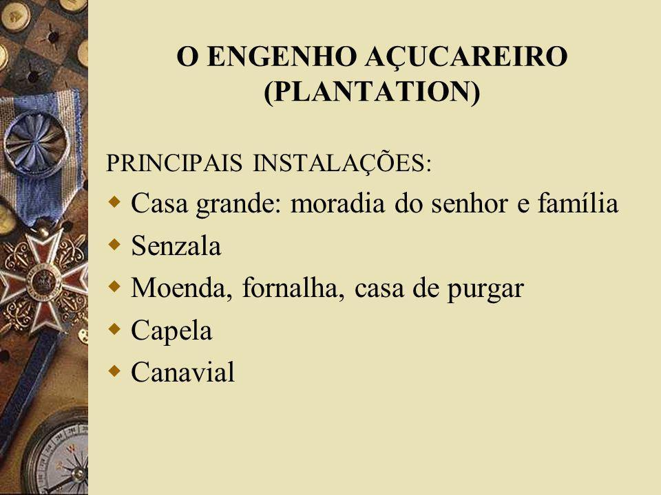 O ENGENHO AÇUCAREIRO (PLANTATION) PRINCIPAIS INSTALAÇÕES: Casa grande: moradia do senhor e família Senzala Moenda, fornalha, casa de purgar Capela Can