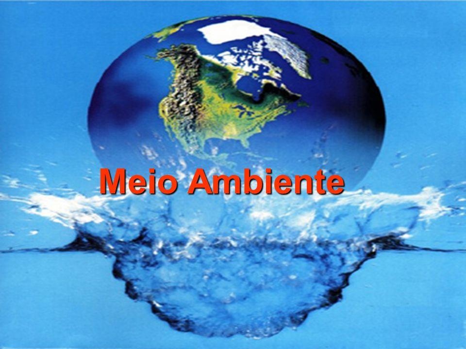 Ao redor das grandes cidades pode-se notar os efeitos da poluição sobre o equilíbrio biológico dos rios e lagos.