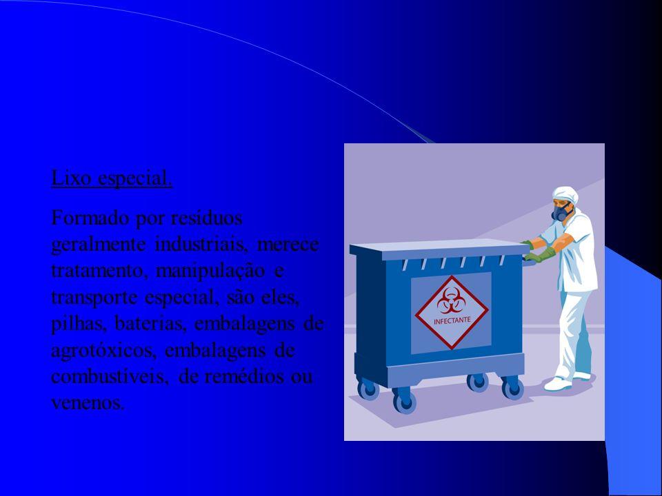 Lixo público. Formado por resíduos sólidos produto de limpeza pública (areia, papéis, folhagem, poda de árvores).