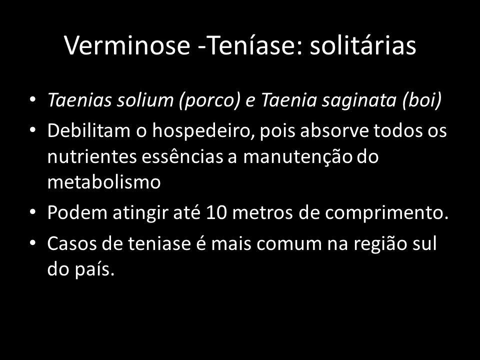 Verminose -Teníase: solitárias Taenias solium (porco) e Taenia saginata (boi) Debilitam o hospedeiro, pois absorve todos os nutrientes essências a man