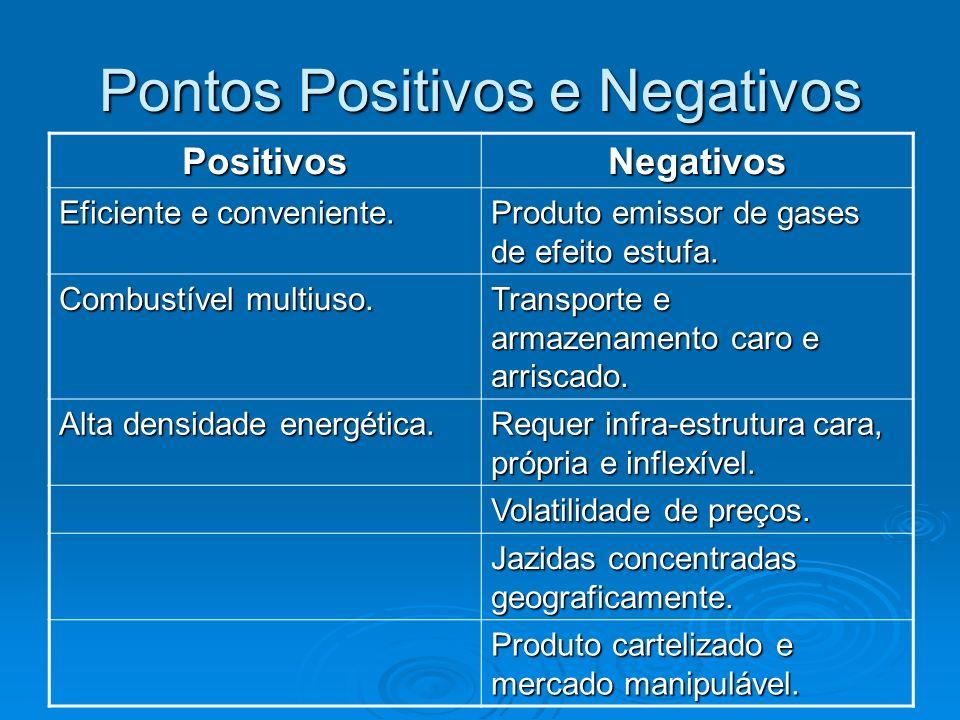 Pontos Positivos e Negativos PositivosNegativos Eficiente e conveniente. Produto emissor de gases de efeito estufa. Combustível multiuso. Transporte e