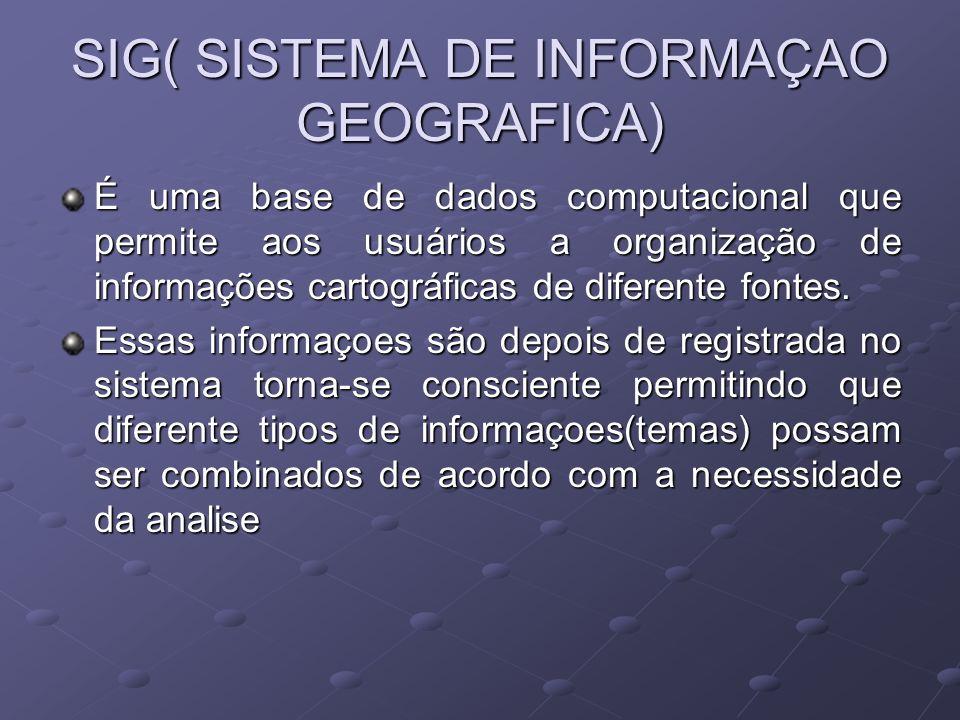 SIG( SISTEMA DE INFORMAÇAO GEOGRAFICA) É uma base de dados computacional que permite aos usuários a organização de informações cartográficas de difere