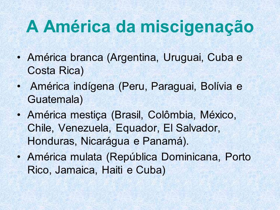 A América da miscigenação América branca (Argentina, Uruguai, Cuba e Costa Rica) América indígena (Peru, Paraguai, Bolívia e Guatemala) América mestiç