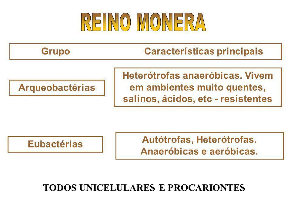 Grupo Características principais Arqueobactérias Heterótrofas anaeróbicas. Vivem em ambientes muito quentes, salinos, ácidos, etc - resistentes Autótr