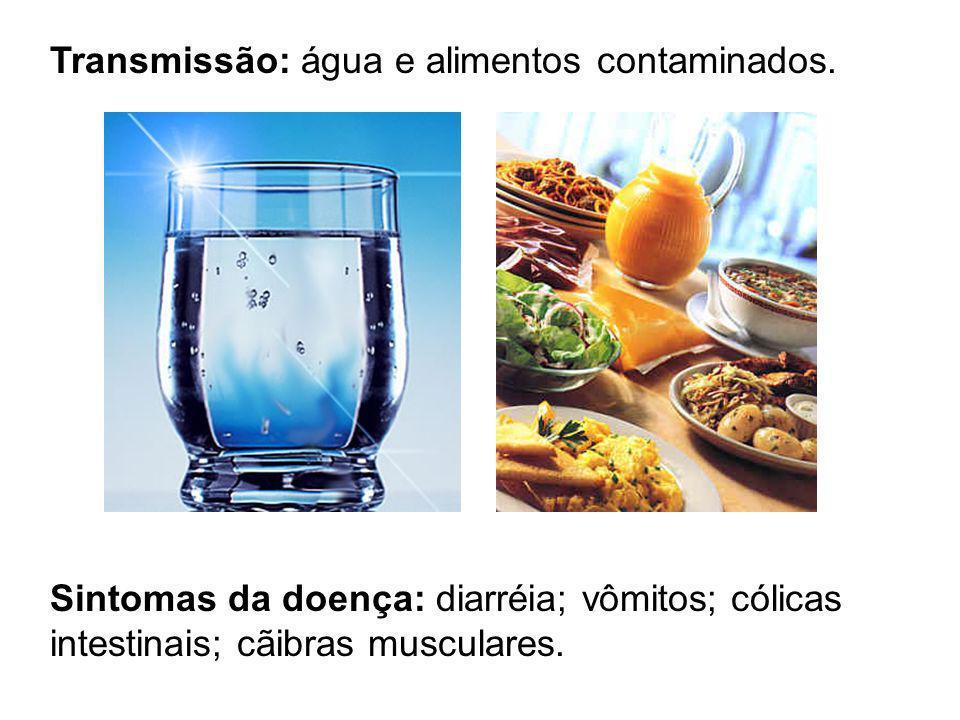 Transmissão: água e alimentos contaminados. Sintomas da doença: diarréia; vômitos; cólicas intestinais; cãibras musculares.