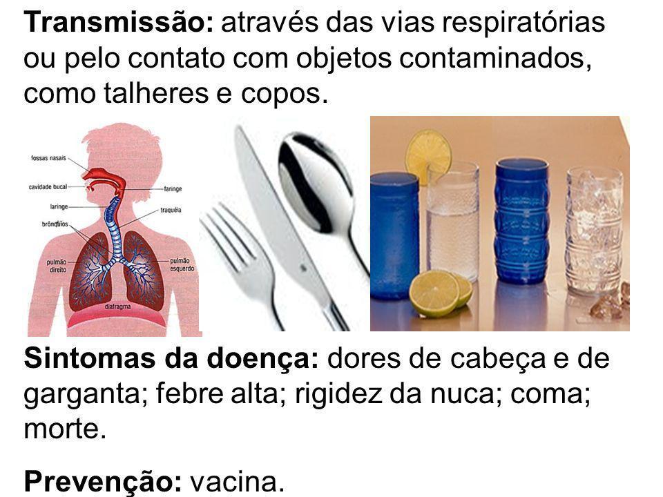 Transmissão: através das vias respiratórias ou pelo contato com objetos contaminados, como talheres e copos. Sintomas da doença: dores de cabeça e de