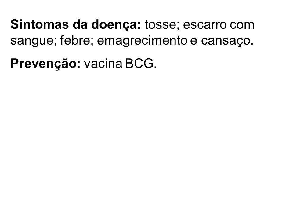 Sintomas da doença: tosse; escarro com sangue; febre; emagrecimento e cansaço. Prevenção: vacina BCG.