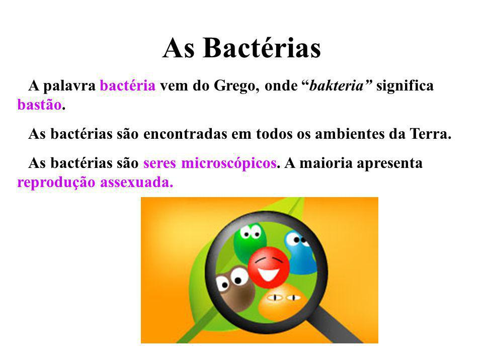 As Bactérias A palavra bactéria vem do Grego, onde bakteria significa bastão. As bactérias são encontradas em todos os ambientes da Terra. As bactéria