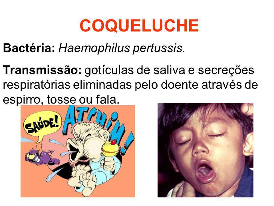 COQUELUCHE Bactéria: Haemophilus pertussis. Transmissão: gotículas de saliva e secreções respiratórias eliminadas pelo doente através de espirro, toss