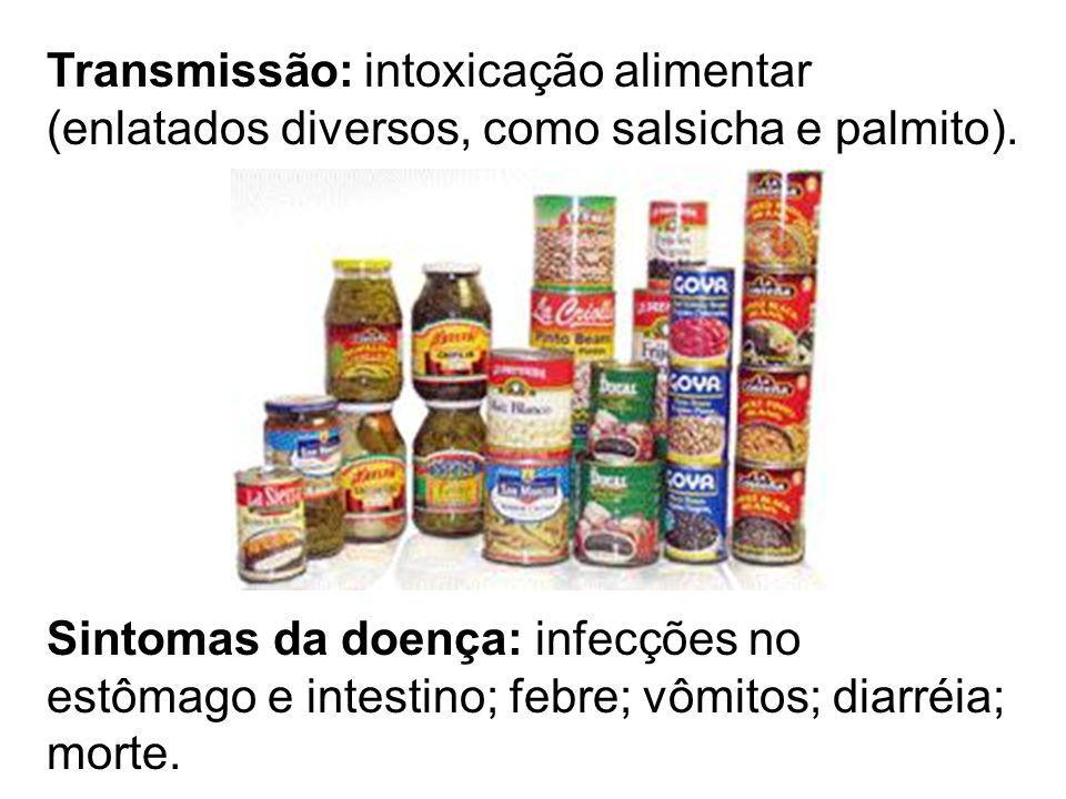 Transmissão: intoxicação alimentar (enlatados diversos, como salsicha e palmito). Sintomas da doença: infecções no estômago e intestino; febre; vômito