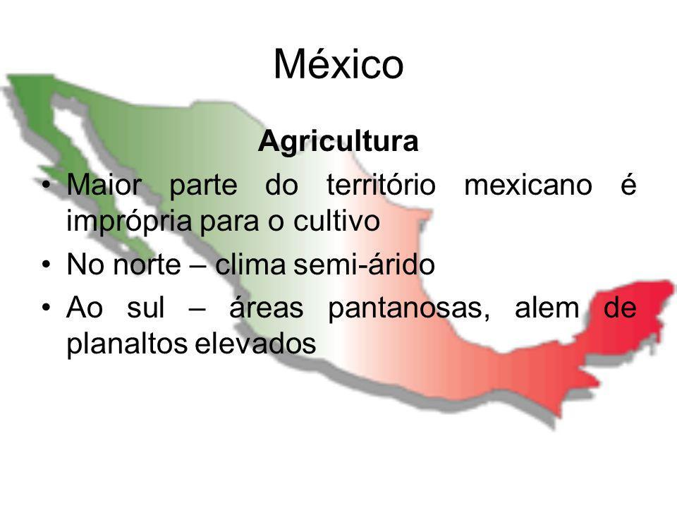 México Agricultura Maior parte do território mexicano é imprópria para o cultivo No norte – clima semi-árido Ao sul – áreas pantanosas, alem de planal