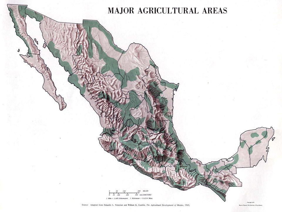 México Tradicional Sistema de subsistência Pequenas lavouras Milho e feijão Próprio consumo do agricultor