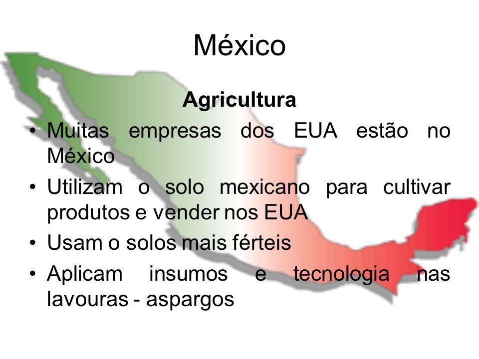 México Agricultura Muitas empresas dos EUA estão no México Utilizam o solo mexicano para cultivar produtos e vender nos EUA Usam o solos mais férteis