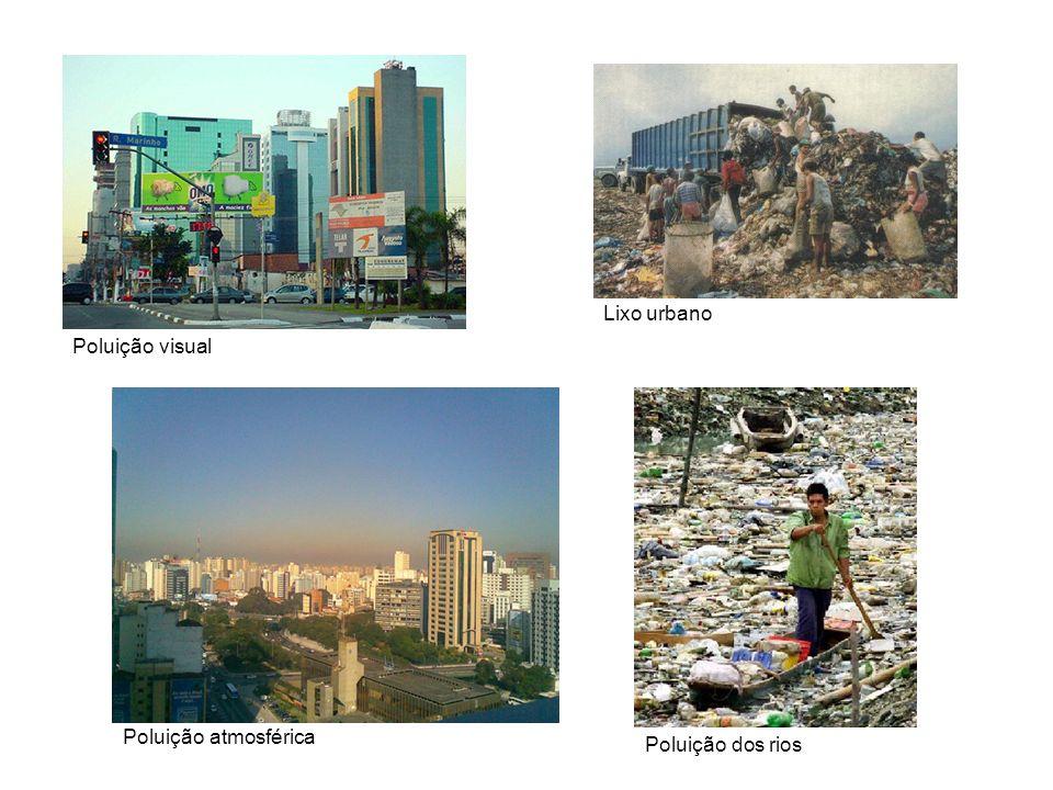 Poluição visual Poluição dos rios Poluição atmosférica Lixo urbano