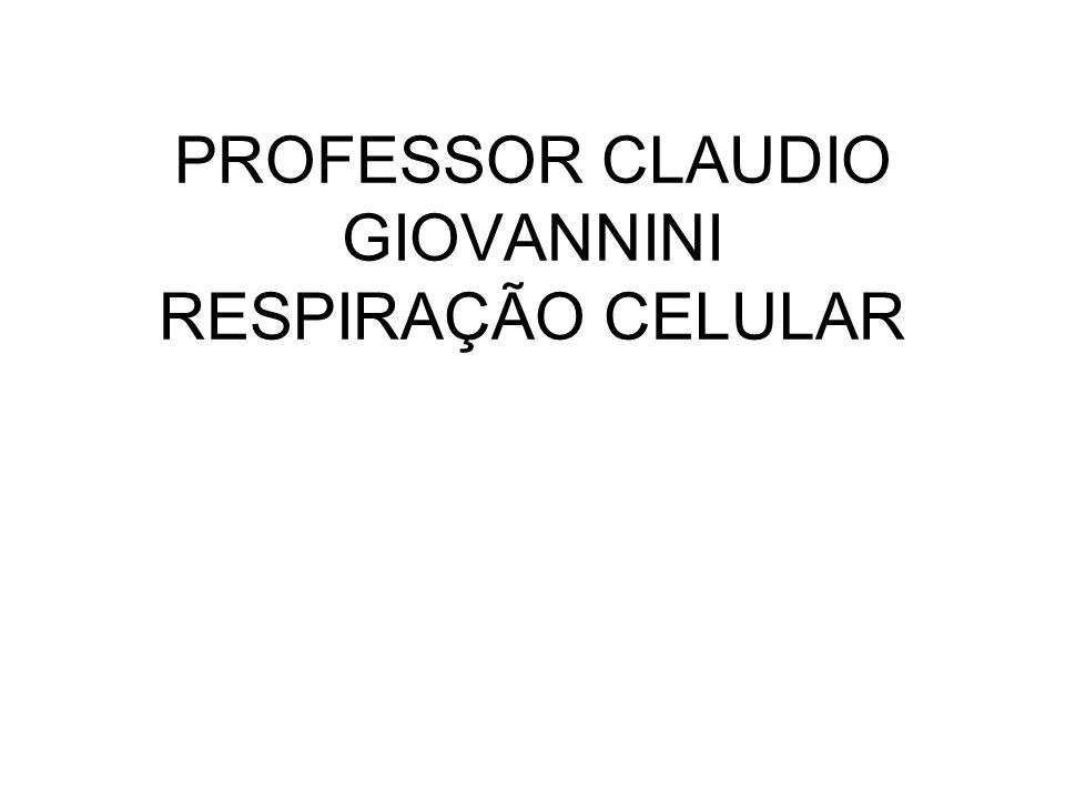 2ª ETAPA – CICLO DE KREBS Acetil CoA Ácido Oxaloácetico Ácido Cítrico 4 CO 2 6 NADH 2 FADH 2 2 ADP 2 ATP