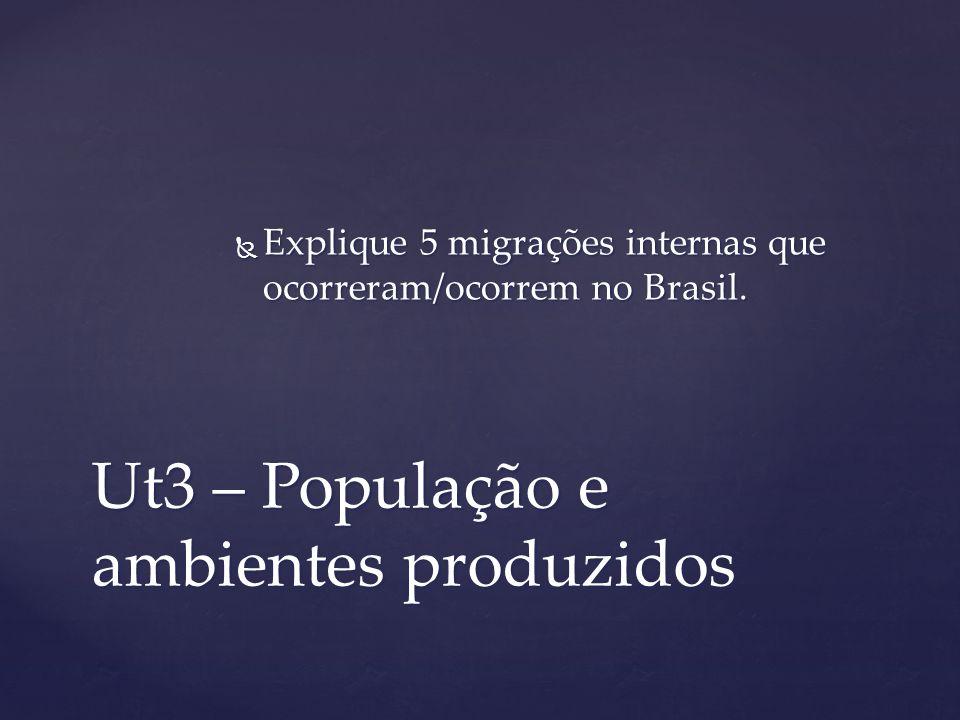 Ut3 – População e ambientes produzidos Explique 5 migrações internas que ocorreram/ocorrem no Brasil. Explique 5 migrações internas que ocorreram/ocor