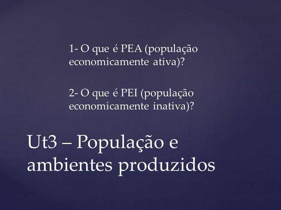 Ut3 – População e ambientes produzidos 1- O que é PEA (população economicamente ativa)? 2- O que é PEI (população economicamente inativa)?
