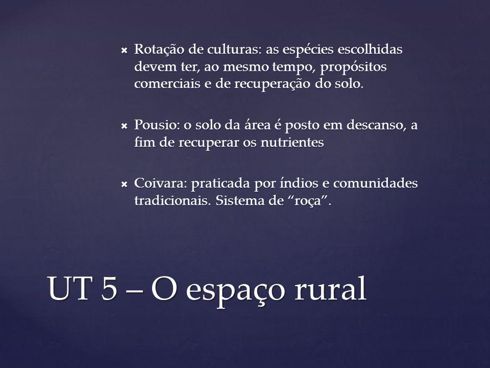 UT 5 – O espaço rural Rotação de culturas: as espécies escolhidas devem ter, ao mesmo tempo, propósitos comerciais e de recuperação do solo. Rotação d