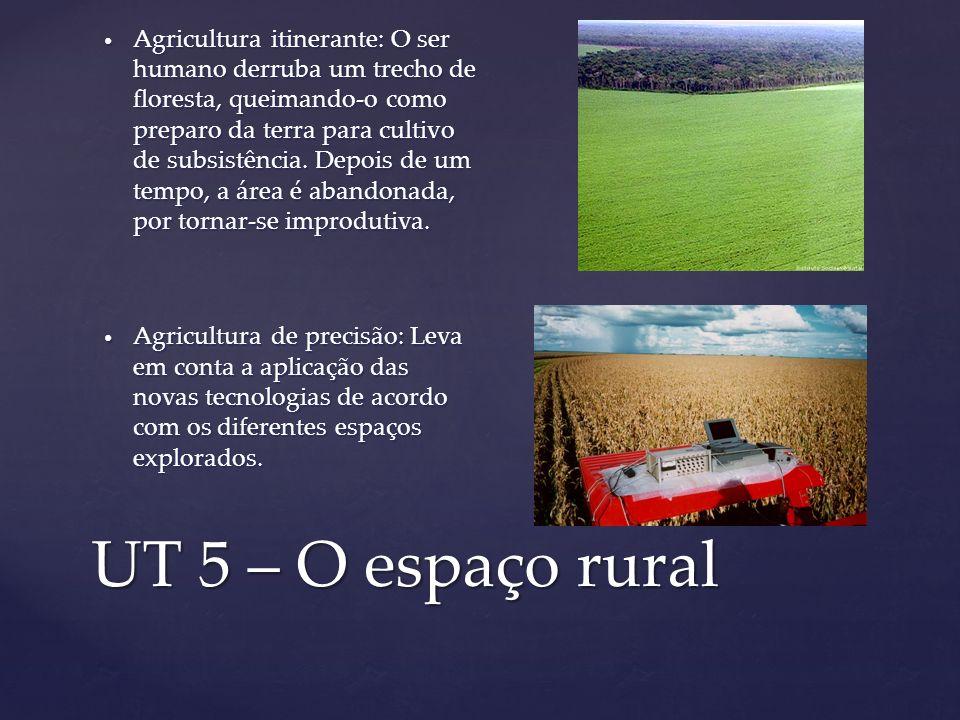 UT 5 – O espaço rural Agricultura itinerante: O ser humano derruba um trecho de floresta, queimando-o como preparo da terra para cultivo de subsistênc