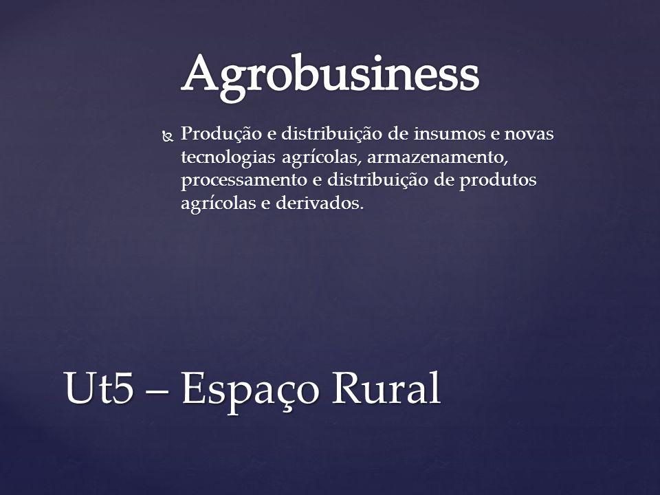 Produção e distribuição de insumos e novas tecnologias agrícolas, armazenamento, processamento e distribuição de produtos agrícolas e derivados. Produ