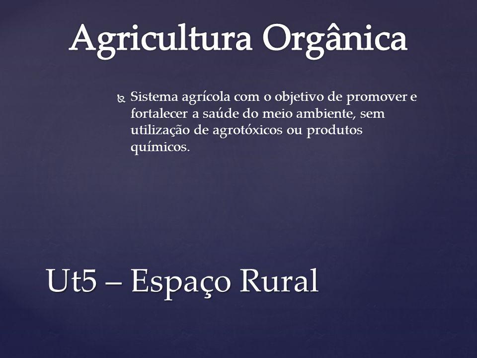Sistema agrícola com o objetivo de promover e fortalecer a saúde do meio ambiente, sem utilização de agrotóxicos ou produtos químicos. Sistema agrícol