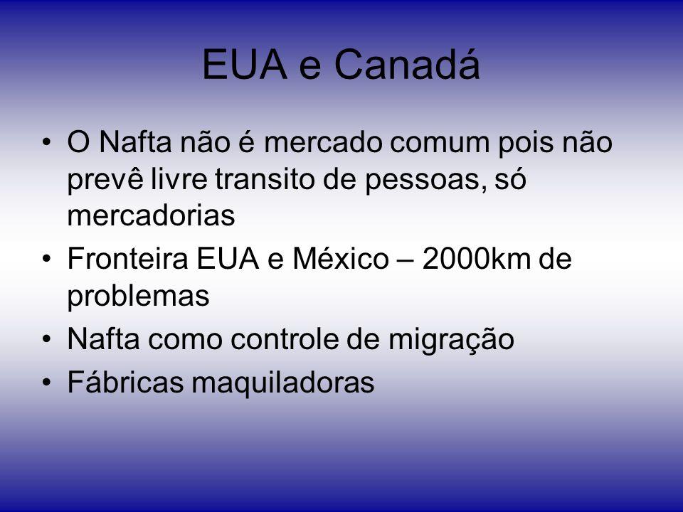 EUA e Canadá O Nafta não é mercado comum pois não prevê livre transito de pessoas, só mercadorias Fronteira EUA e México – 2000km de problemas Nafta c