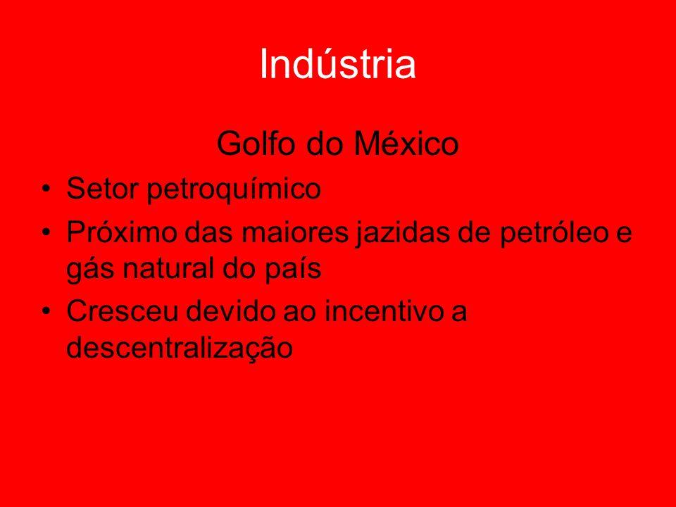 Golfo do México Setor petroquímico Próximo das maiores jazidas de petróleo e gás natural do país Cresceu devido ao incentivo a descentralização