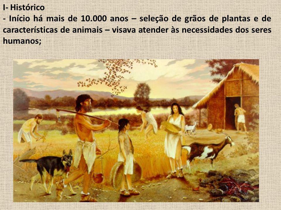 I- Histórico - Início há mais de 10.000 anos – seleção de grãos de plantas e de características de animais – visava atender às necessidades dos seres