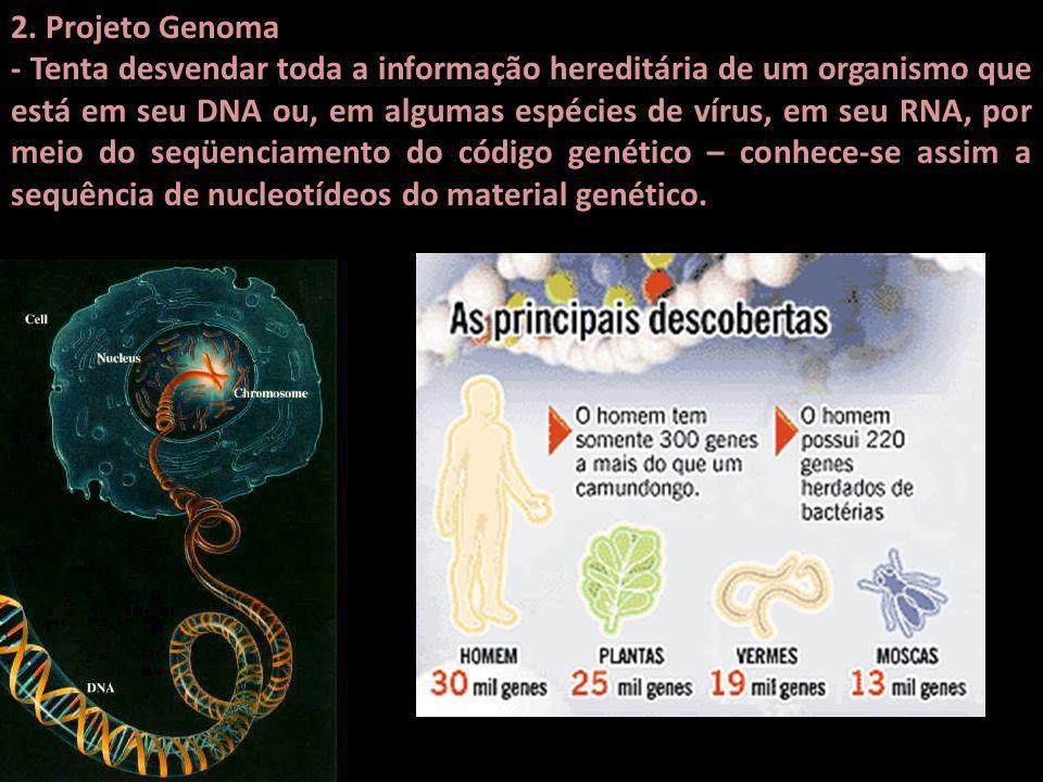 2. Projeto Genoma - Tenta desvendar toda a informação hereditária de um organismo que está em seu DNA ou, em algumas espécies de vírus, em seu RNA, po