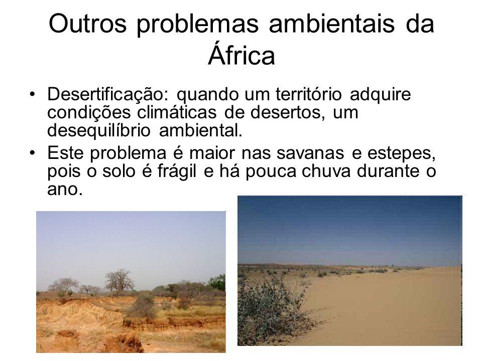 Outros problemas ambientais da África Desertificação: quando um território adquire condições climáticas de desertos, um desequilíbrio ambiental. Este