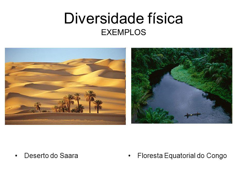 Diversidade física EXEMPLOS Deserto do SaaraFloresta Equatorial do Congo