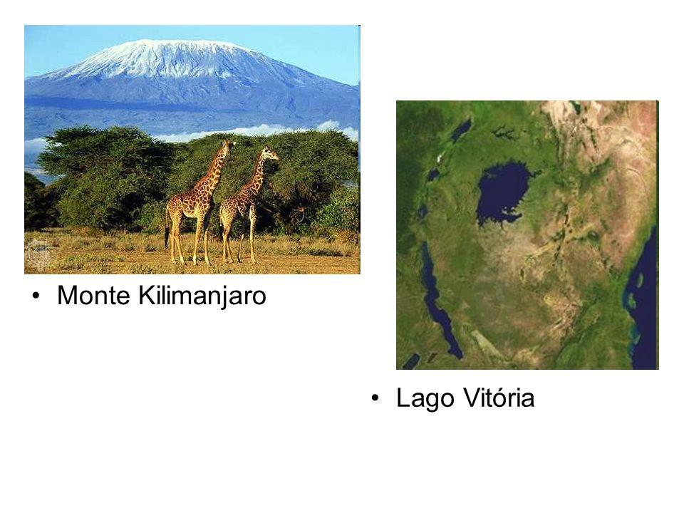 Demais aspectos do relevo africano Ao norte encontramos a Cadeia do Atlas, região montanhosa.