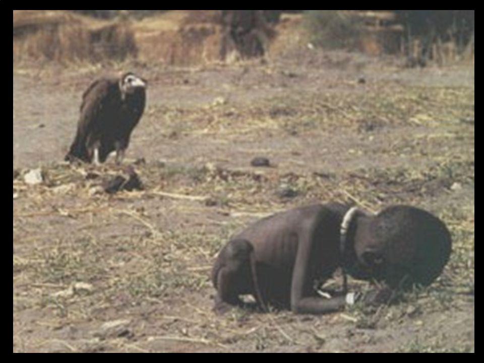 Metade da Humanidade não come; e a outra metade não dorme, com medo da que não come.(Josué de Castro)